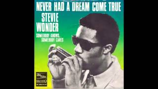 Stevie Wonder Never Had A Dream Come True