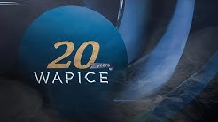 Wapice 20th Anniversary party