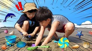 몽산포해수욕장 갯벌체험 조개잡기.맛조개야 어디있니?  Mudflat Shellfish at Mongsanpo Beach