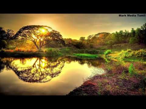 Beauty Of Nature   Tamil Information   Mark Media Tamil