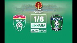 Тосно - Томь. 1/8 финала. Кубок России.