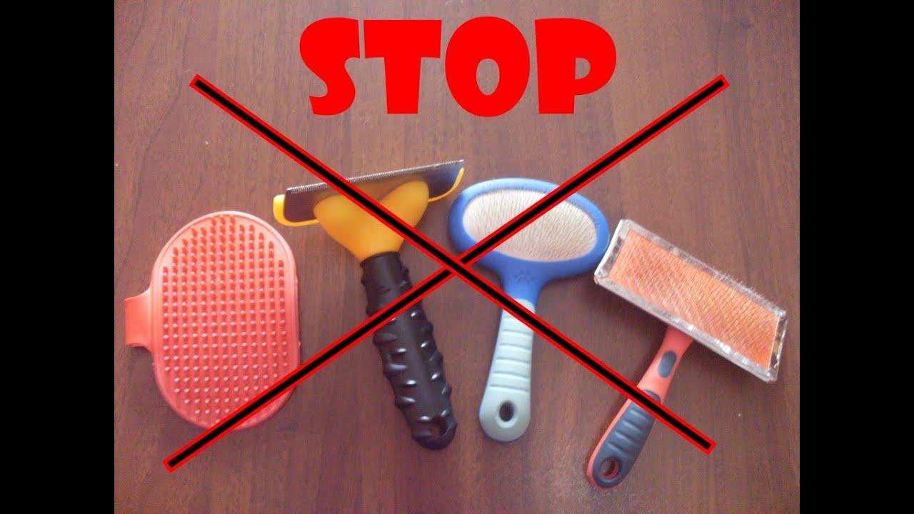 Palline Raccogli Peli Lavatrice.Come Eliminare I Peli Del Cane Metodo Magico Youtube