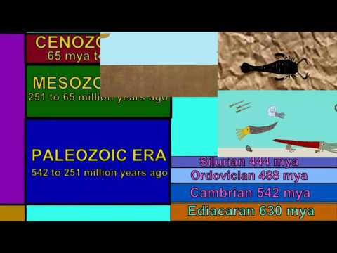 ANIMALS OF THE ORDOVICIAN & SILURIAN