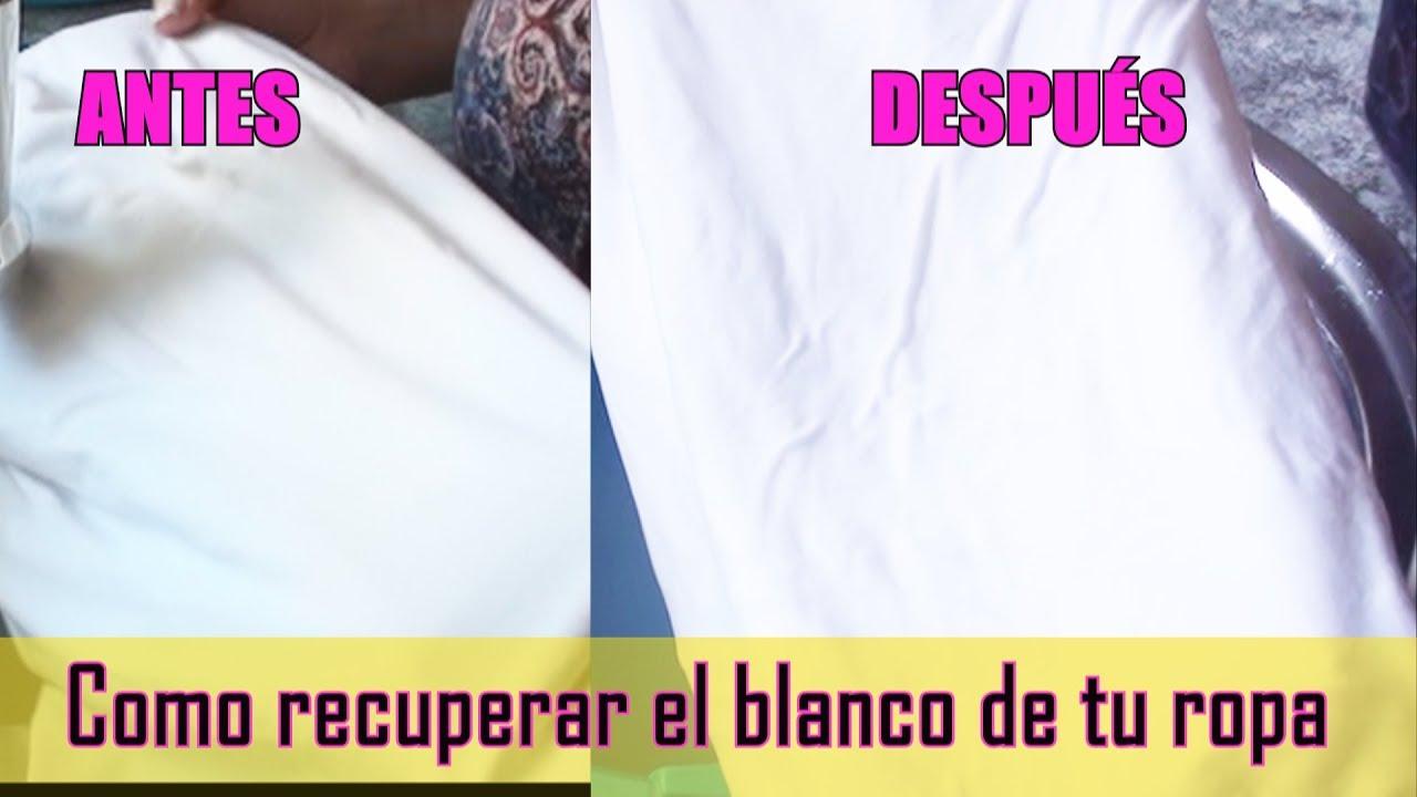 Tareas Del Hogar Analista Embotellamiento Que Usar Para Blanquear Ropa Blanca Actem Madrid Com