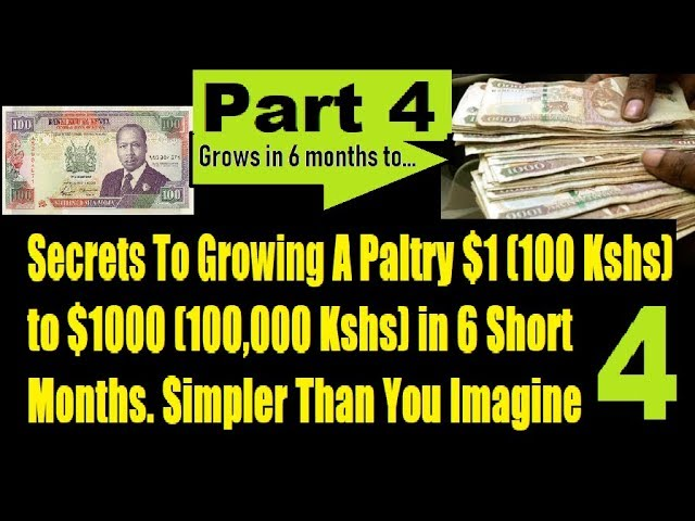 Is It Really Possible To Turn Kshs 100 Into Kshs 1 Million In 6 Months? Part 4