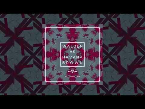 No Ordinary Love - Walden Vs Havana (Original Mix)