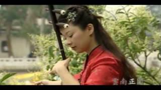 中國二胡 (Chinese Er Hu) (Video Track 01)