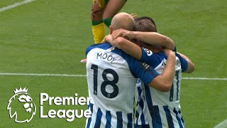 Leandro Trossard slides Brighton ahead of Norwich City   Premier League   NBC Sports