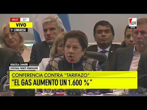 La diputada del Frente Renovador cuestionó al Gobierno en una conferencia de prensa en la que su bloque presentó un proyecto para revertir el aumento en los servicios públicos.