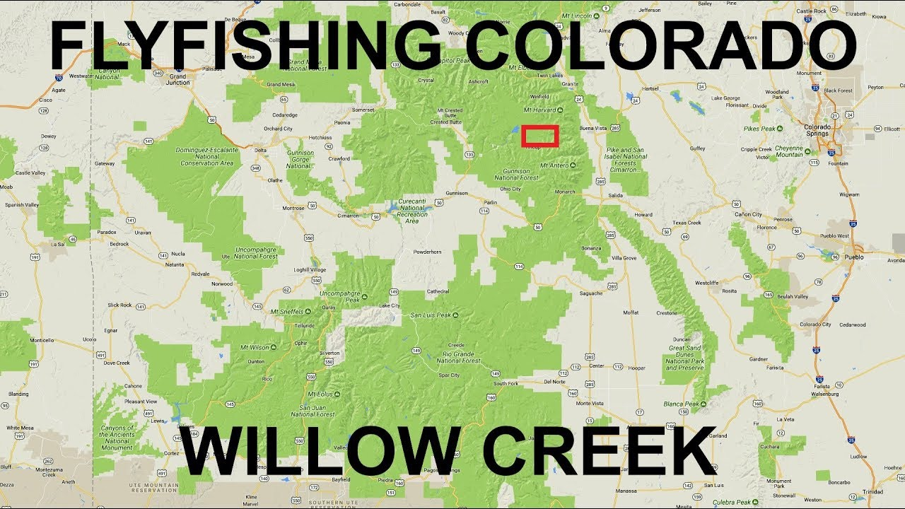 Fishing near tincup co willow creek youtube for Colorado out of state fishing license