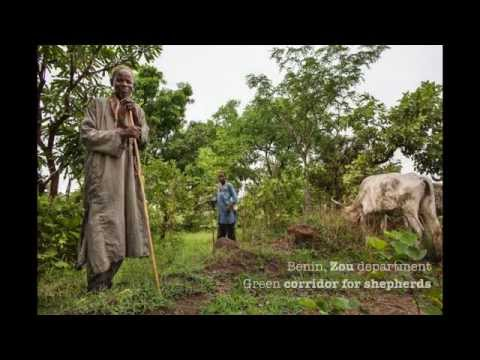 The Great Green Wall of Africa - the World Bank/ Global Environment Facility Contribution