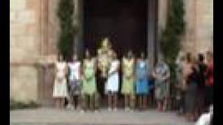 Salves, campanes i gojos a la Puríssima de Petrés 26-8- 2007