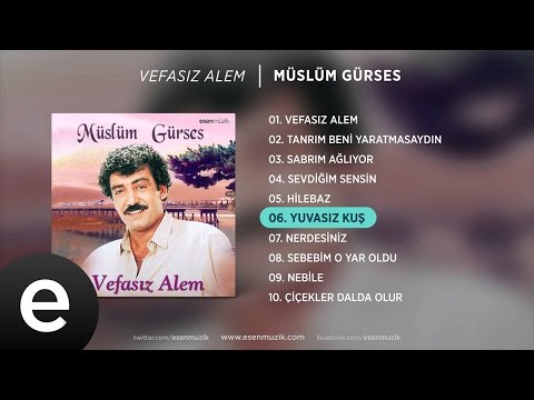 Yuvasız Kuş (Müslüm Gürses) Official Audio #yuvasızkuş #müslümgürses