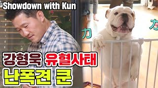 showdown with 'kun' [Dogs are incredible]