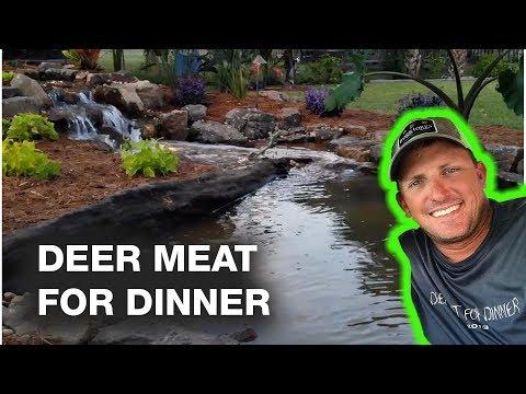 DEER MEAT FOR DINNER's Mom Gets a Dream KOI POND