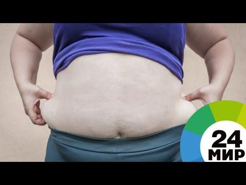 Тучных россиян стало вдвое больше. Как бороться с ожирением? - МИР 24
