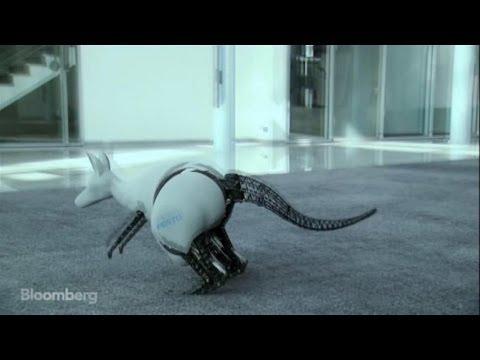 bionic jump style meet