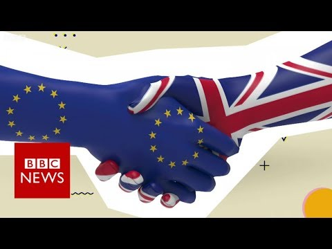 Brexit : What is the backstop? - BBC News