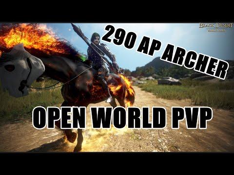BDO 290 AP Archer Open World PvP #3