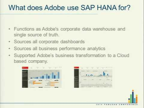 Adobe Systems: Best Practices for Reporting on SAP HANA