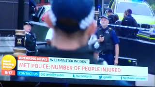 Westminster Incident Reaction - London, UK - 14th August 2018.