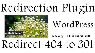 Redirection WordPress Plugin | Redirect visitor from 404 to 301