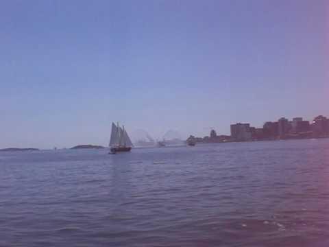 Tall Ships Parade of Sail