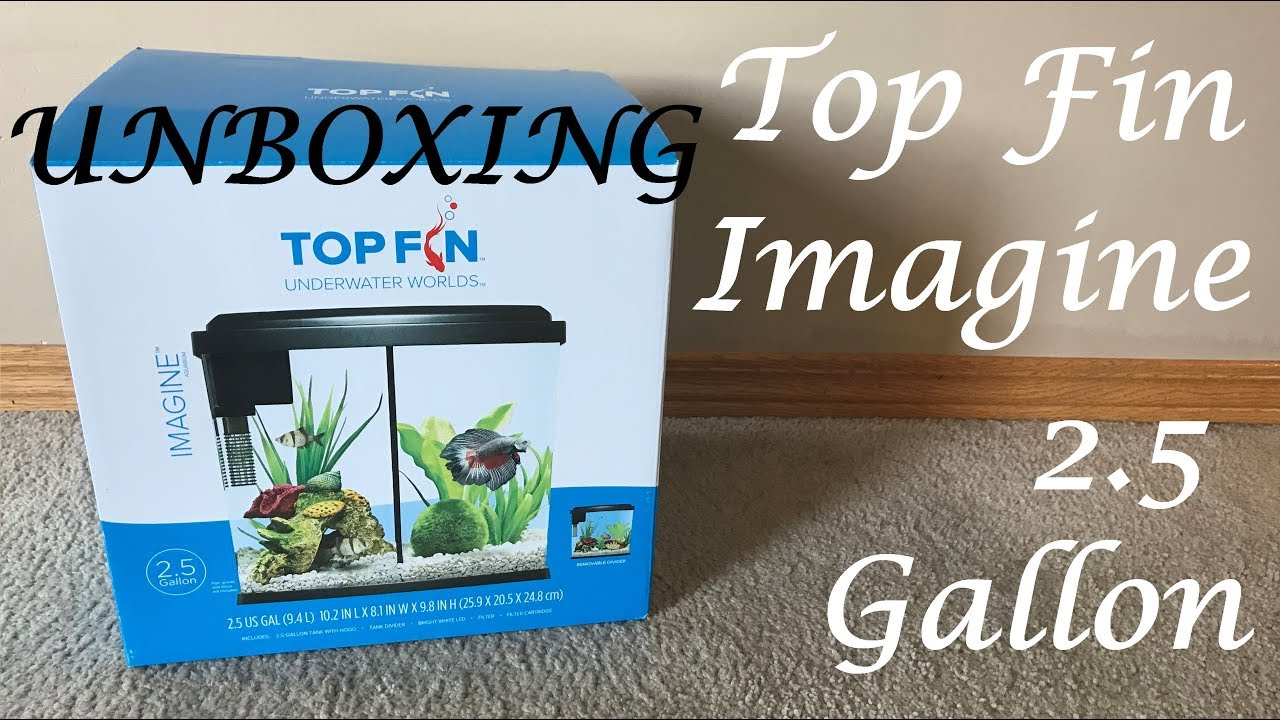 Top Fin 20w Betta Tank Heater Unboxing And Installation Youtube