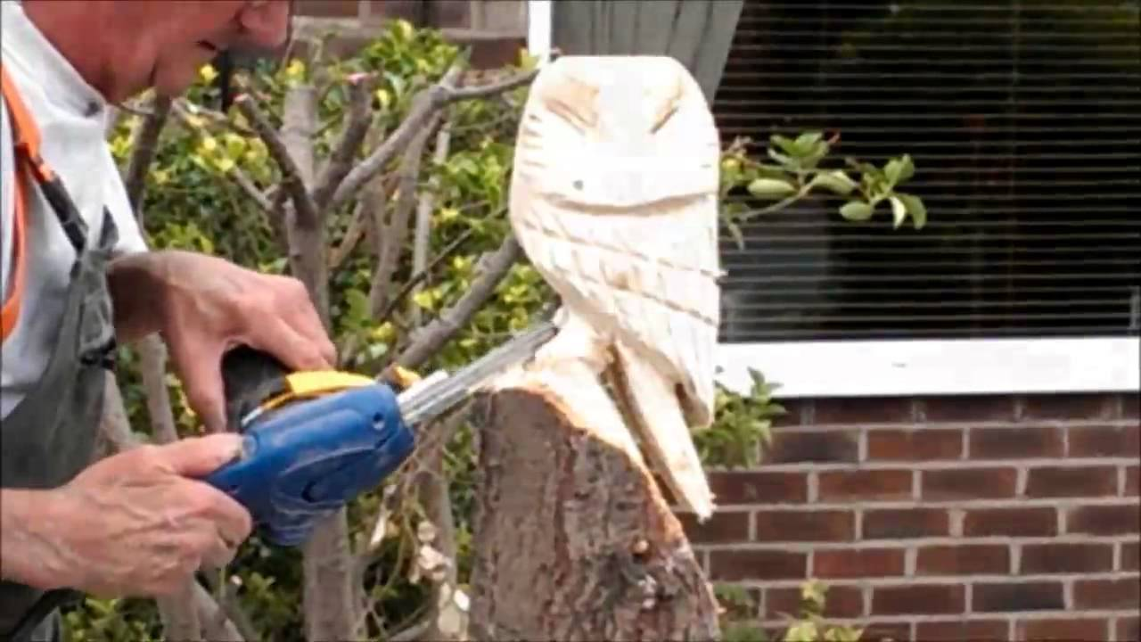 My dad making a chainsaw carving of an owl from tree