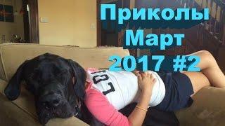 ПРИКОЛЫ 2017 18+ ЛУЧШИЕ ПРИКОЛЫ С ДЕВУШКАМИ  ЗА 2017 #2