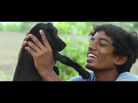 'NAAI KUTTY' Short Film Full HD 1080p.