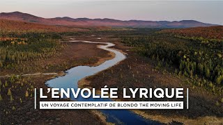 """L'ENVOLÉE LYRIQUE"" - A FALL CONTEMPLATIVE MOVIE - AMBIENT & DEEP MUSIC - (Full HD Drone Video)"