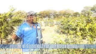 Gambar cover Raphela's farm grows three types of citrus family group