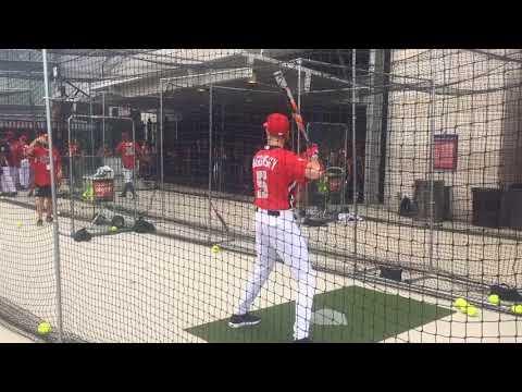 Scott Rogowsky, host of HQ trivia (Quiz Khalifa), takes batting practice before the MLB Celebrity...