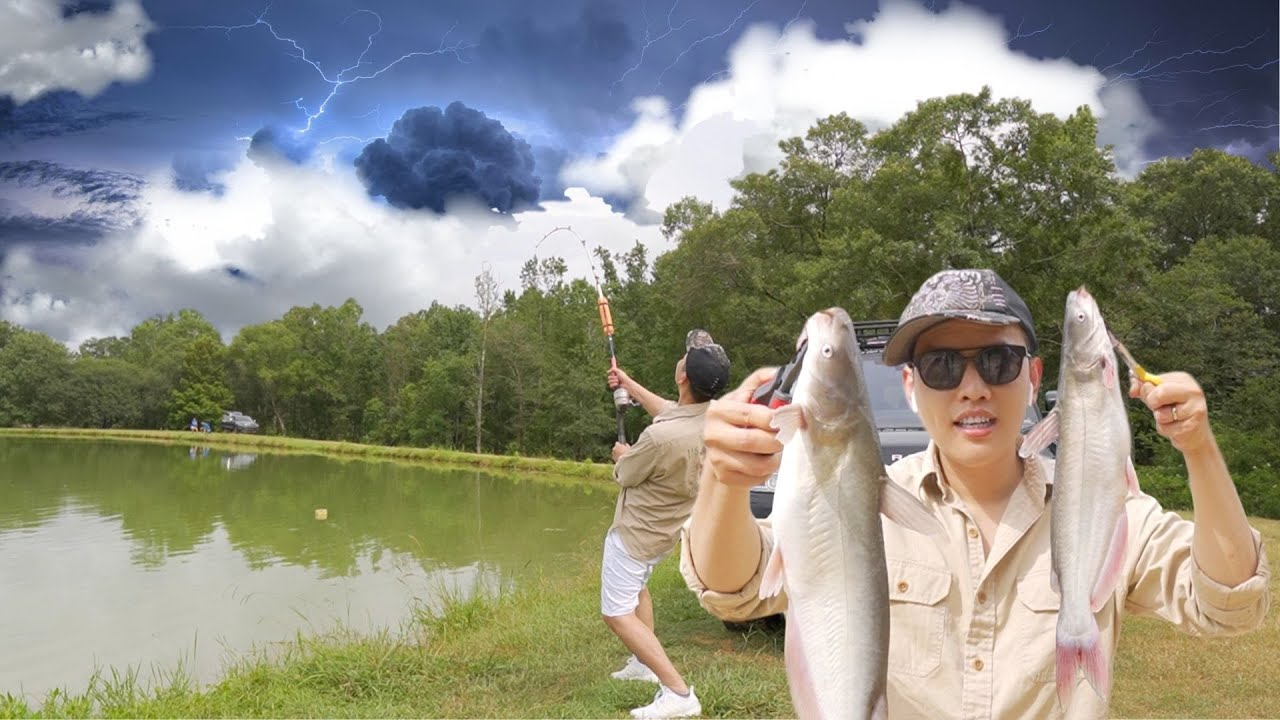 Đi nông trại nuôi cá Blue Catfish (trò giải trí độc đáo ở Louisiana)