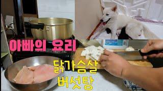 진돗개 산모를 위한 요리, 출산 2일차/진돗개 출산,육…
