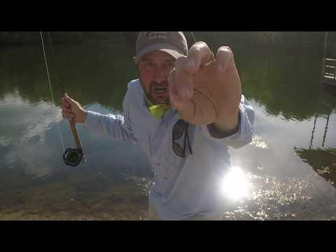 Fly Fishing For Bluegill- How I Do It