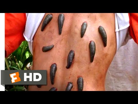 Anacondas 2 (2004) - Bloodsucking Leeches Scene (2/10) | Movieclips