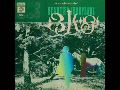 Beautify Junkyards - The Invisible World Of Beautify Junkyards (ALBUM STREAM) Mp3