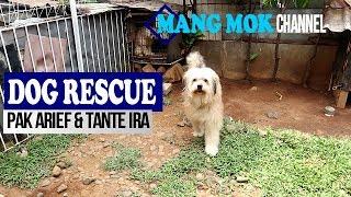 DOG RESCUE: Pak Arief & Tante Ira Selamatkan dan Rawat Banyak Anjing di Rumah -  Mang Mok -