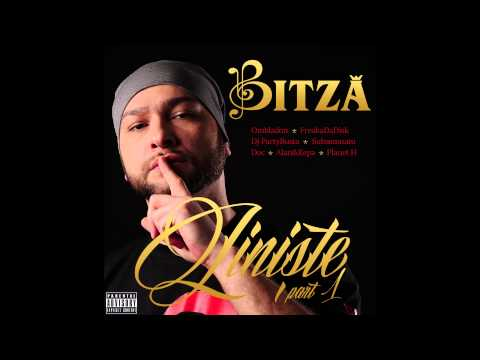 Bitza - Jurnal de cord