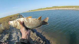 В октябре на канале перед завершением сезона Рыбалка на сазана