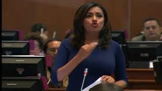 Sesión 479 del Pleno (19-10-2017)