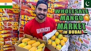India Vs Pakistani Mangoes | MANGO WHOLESALE MARKET IN DUBAI | Import from INDIA & PAKISTAN