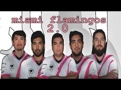 Miami Flamingos 2.0 Con Motor Turbo