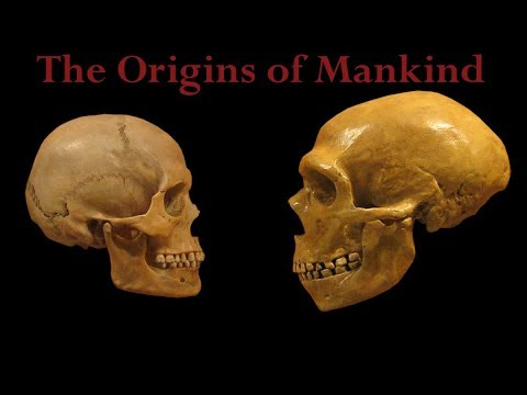 The Origins of Mankind