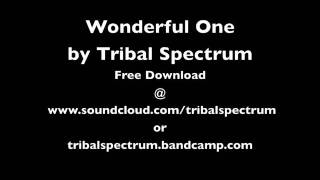 Wonderful One by Tribal Spectrum (Vocals by Marvin Gaye)