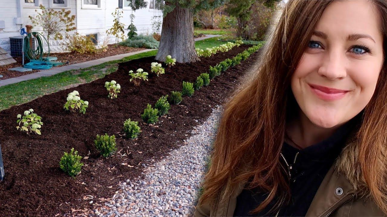 I M Still Planting Hydrangeas In November Garden Answer Youtube