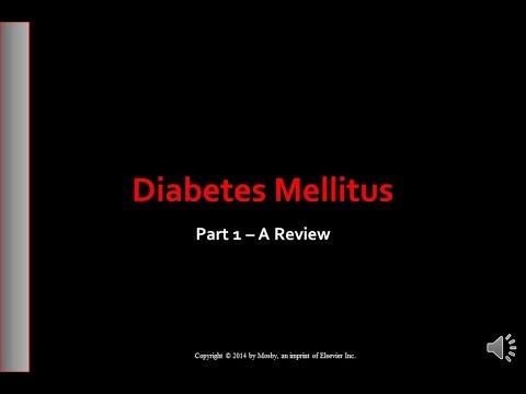 Part 1  Diabetes Mellitus   A Review