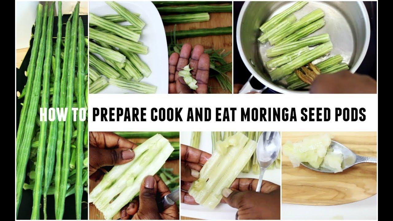 how to eat moringa seeds